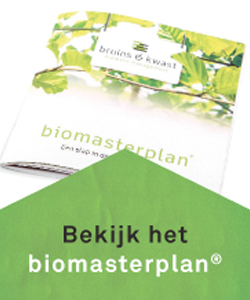 BruinsKwast-Biomasterplan