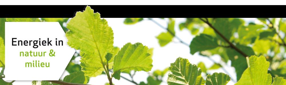 Bruins & Kwast - Energie in natuur en milieu